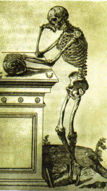 Скелет стоящего человека