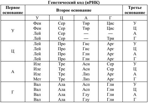 Таблица Генетический код